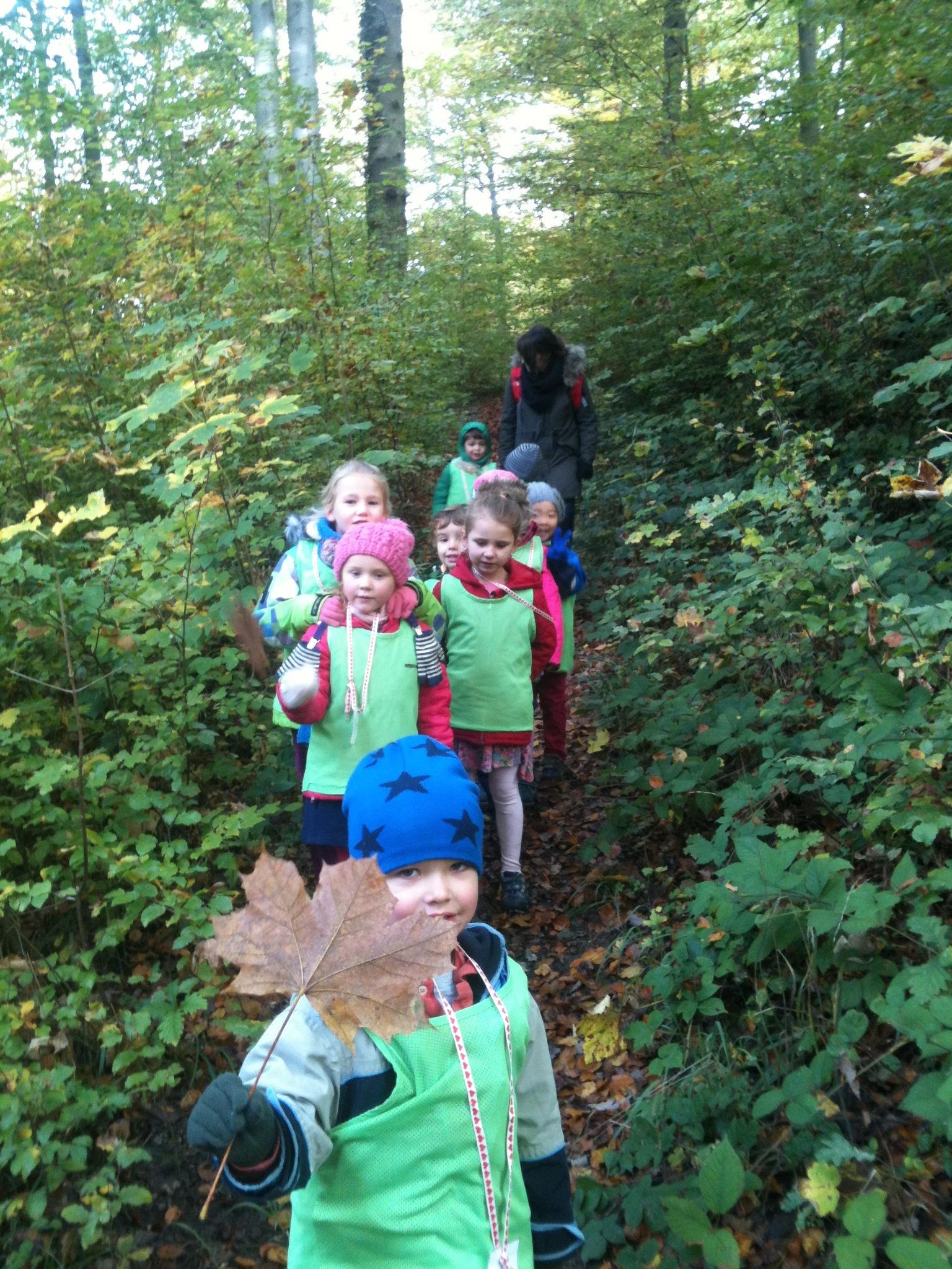 nature walk children activities ch index childrenfirst kindergarten zurich